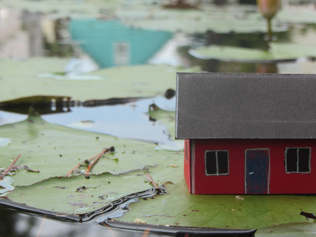Image 5913 is of the house floating on a lily pad in the lagoon on July 3rd. Mike Morrison, Gulf Shores, AL, USA. July 3, 2013